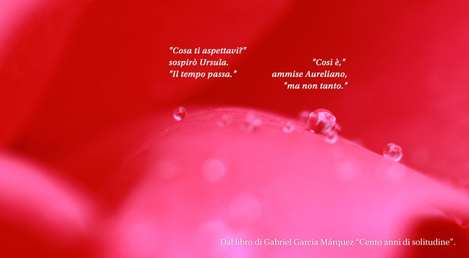more-poetry-marco-maso-poesia